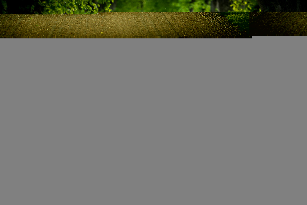 Rachel & Chris — Pre Wedding